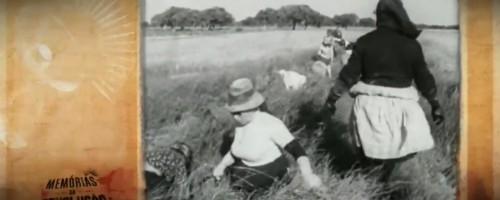 A luta das mulheres na agricultura