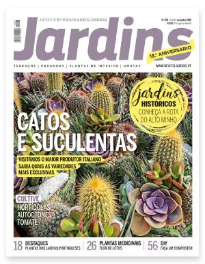 Passatempo n' Praça da Alegria – Revista Jardins