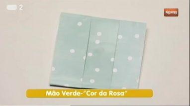 Mão Verde - Cor da Rosa
